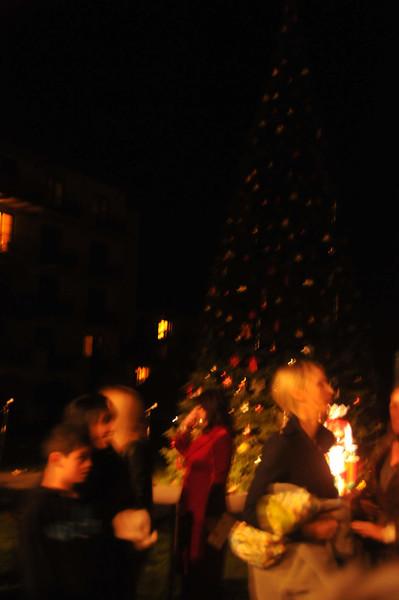 Terranea Christmas