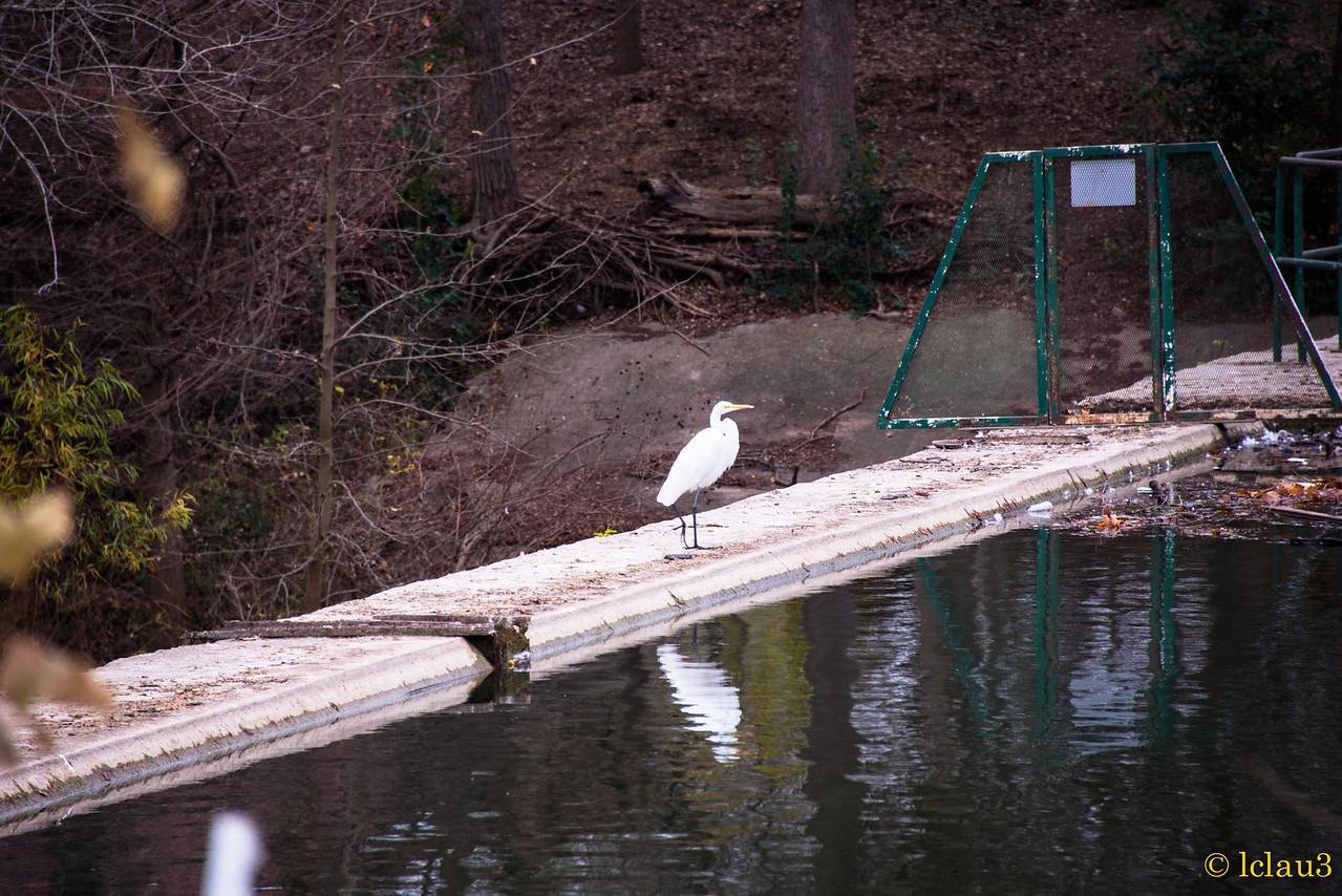 River park in Boerne