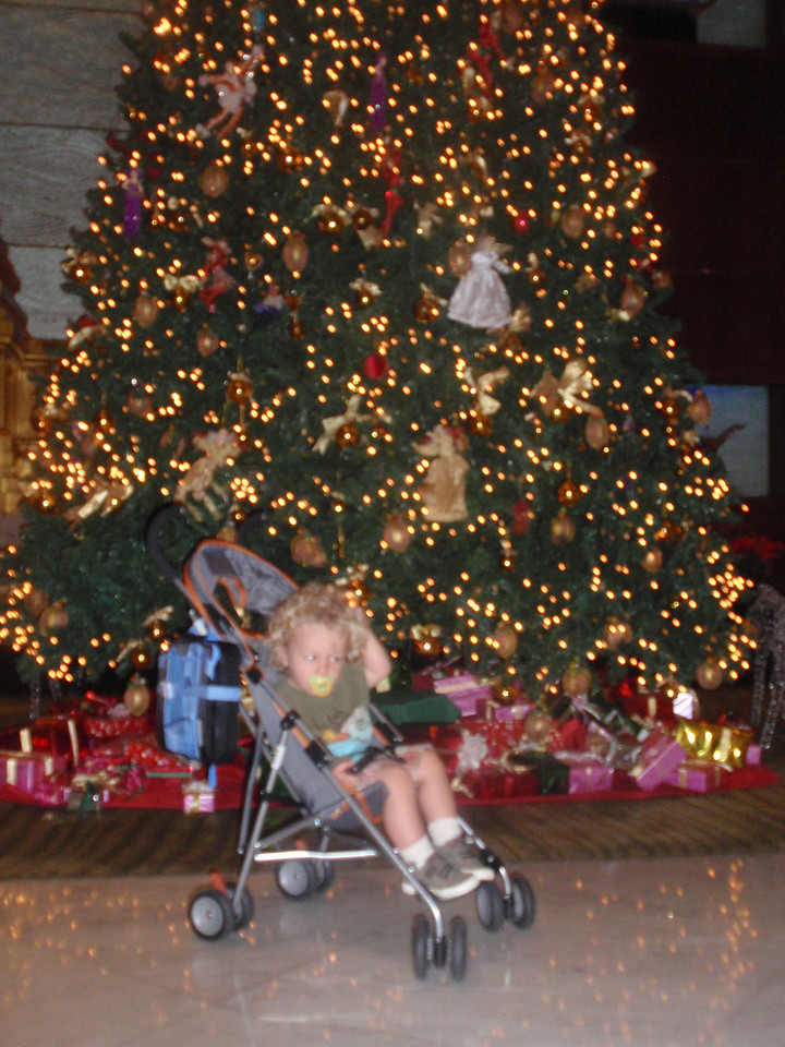 And back to the hotel to wait for Dad.  Christmas trees were still up everywhere.