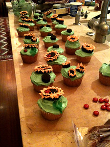 It's 2 sizes of Oreos, some green fruit-roll-ups cut into leaf shapes, red M&Ms with ladybug markings, and a whole lotta icing.
