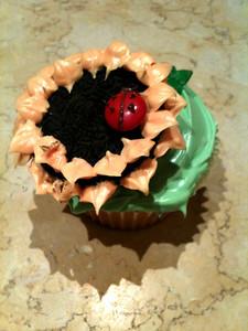 Cupcake with ladybug
