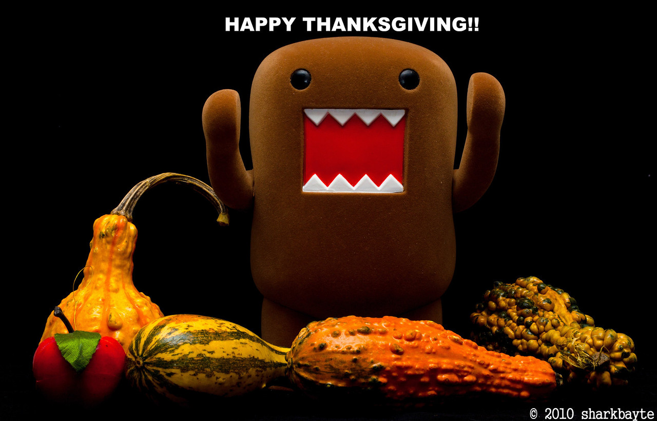 Happy Thanksgiving Domo style. Domo hungry, the aroma of the feast cooking is getting to him and me.