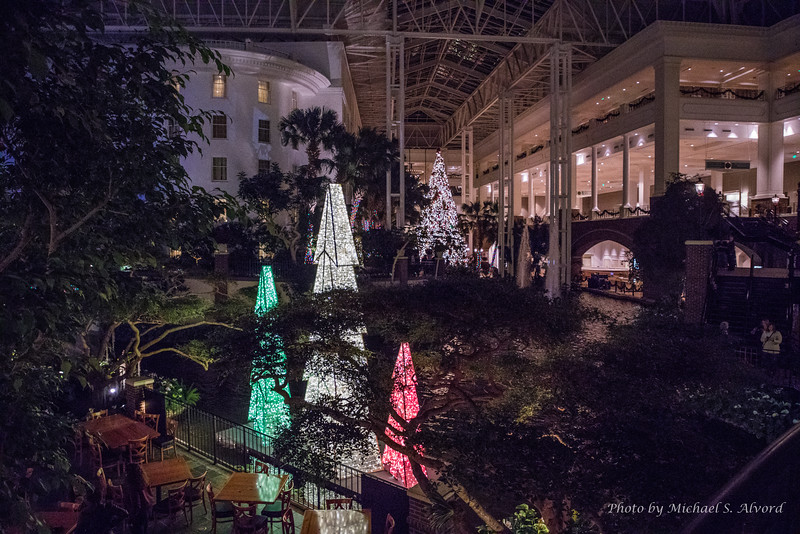 Walking around the Opryland Hotel where we were staying.