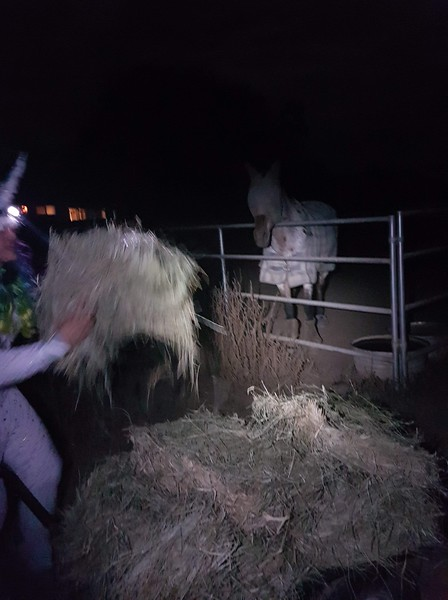 Mancha's most magical midnight feeding