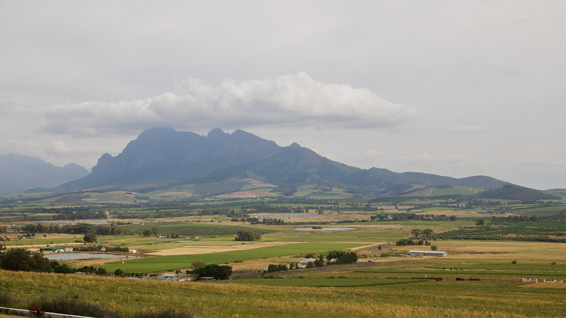 Finally, we entered the lanscapes of Paarl for more wine tasting.  Alas, the light was not good for photos.