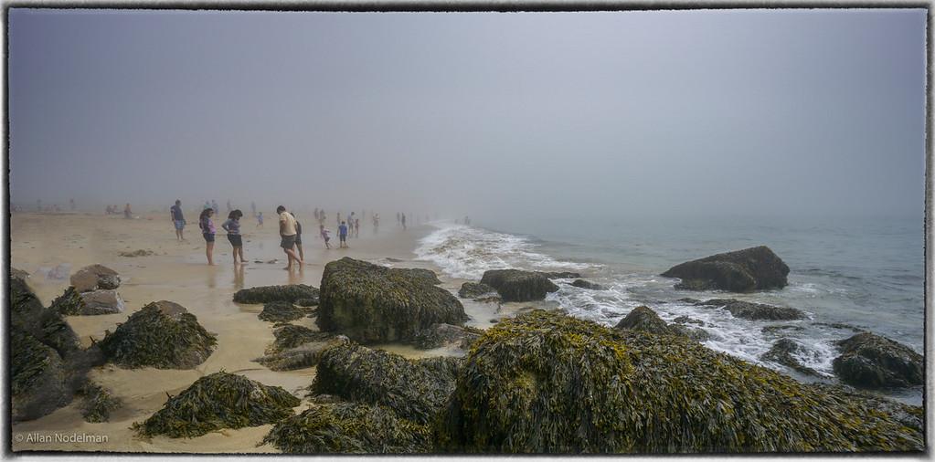 Foggy Sand Beach
