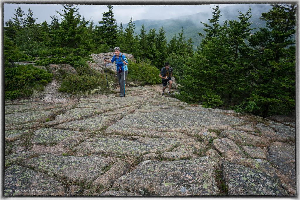 Acadia Hike