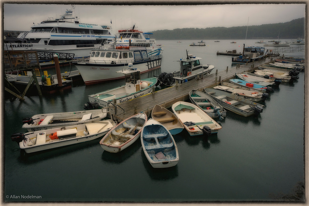 Rainy Bar Harbor Harbour