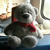 Sohini's teddy travelling by train