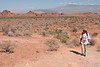 Valley of Fire - 073