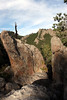 Custer State Park - Needles Highway - 008