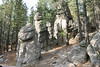 Custer State Park - Needles Highway - 031