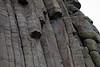 Devil's Tower - Close-ups - 004