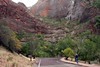 Zion - Weeping Cave 005