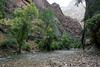 Zion - 2nd Riverside Walk 007