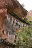 Zion - Emerald Pools Trail - Lower Pool Falls - 002
