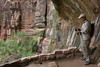 Zion - Weeping Cave 022