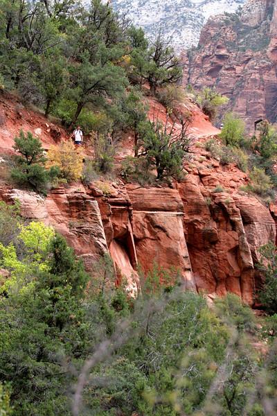 Zion - Emerald Pools Trail - Return Trail - 011