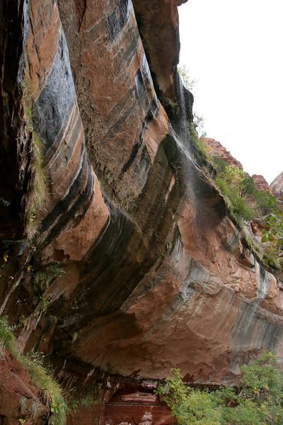 Zion - Emerald Pools Trail - Lower Pool Falls - 003