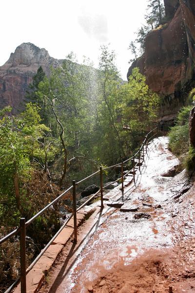 Zion - Emerald Pools Trail - Lower Pool Falls - 005
