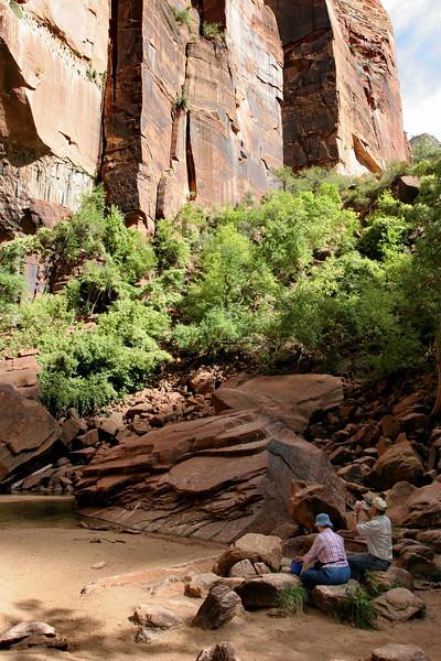 Zion - Emerald Pools Trail - Upper Pools - 004