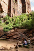 Zion - Emerald Pools Trail - Upper Pools - 004