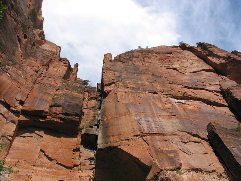 Zion Park - Hike to Emerald Pools - View Up Cliff at Upper Pool