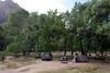 Zion - Campsite Area 002