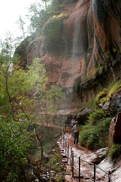 Zion - Emerald Pools Trail - Lower Pool Falls - 007