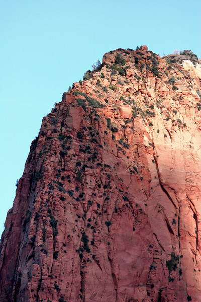 Zion - Colab Canyons Tour 037