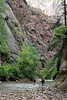Zion - 2nd Riverside Walk 010