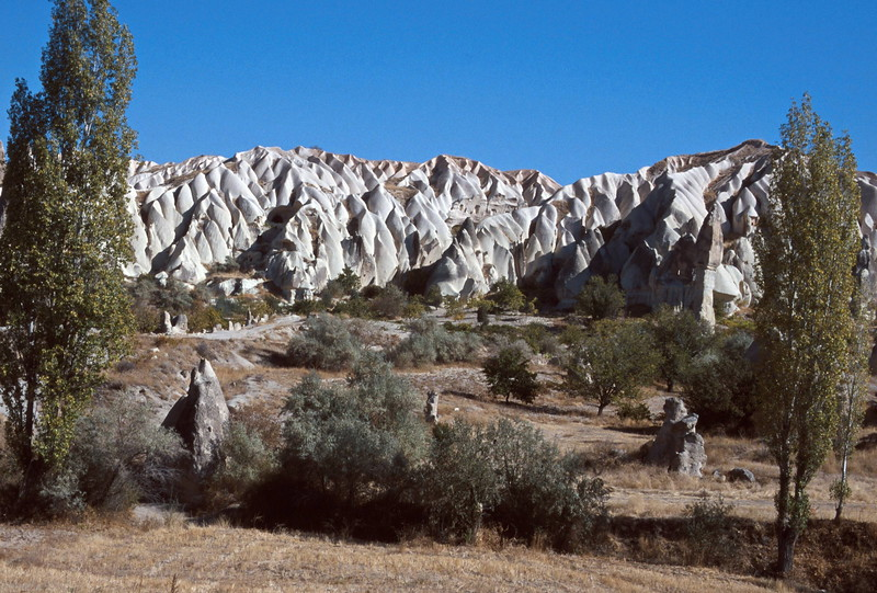 goreme hike - trees in the valley