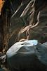 saklikent gorge - erosion