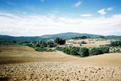 Tuscan Hillside 2