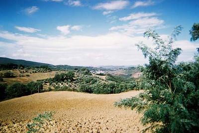 Tuscan Hillsides