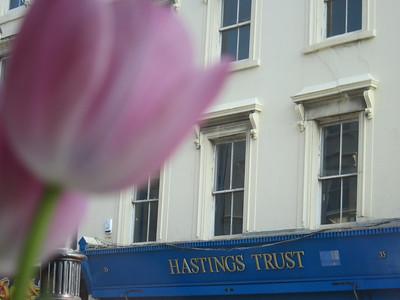 Hastings weekend