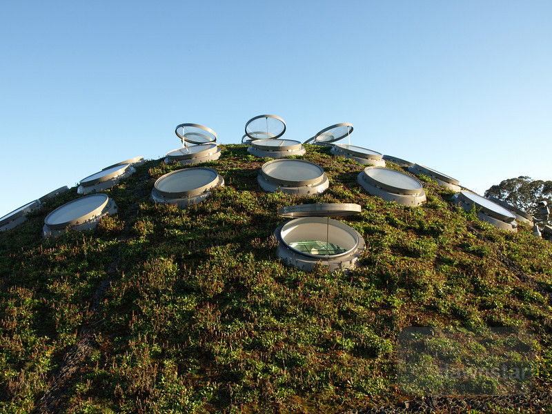 The living roof of the Californian Academy of Sciences