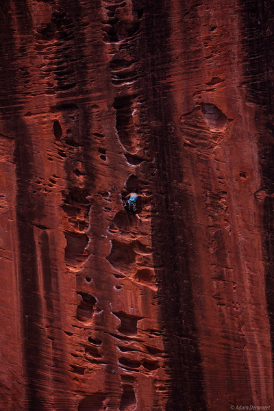 Bec Climbing in Kolob Canyon