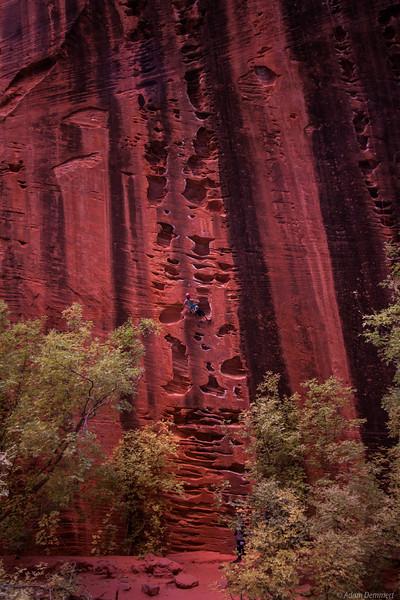 Bec Climbing in Kolob Canyon