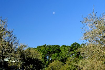 Carribean Beach Resort, Only in the States does the Moon come out at Mid Day!