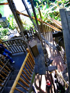 Disney, Magic Kingdom, Adventureland, Swiss Family Robinson