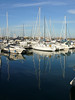 Reflections at the marina.