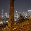 Nightime city skyline from Alamo Square Park