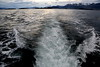 Ushuaia - Harbour and Beagle Channel Tour 148