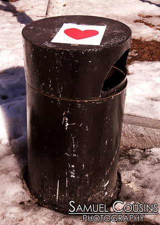 The Valentine's Day Bandit hung hearts across Portland, Maine.
