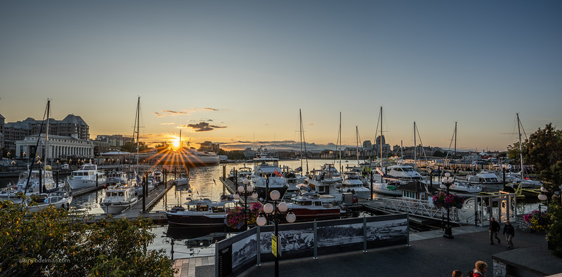 Sunset at Victoria Harbour