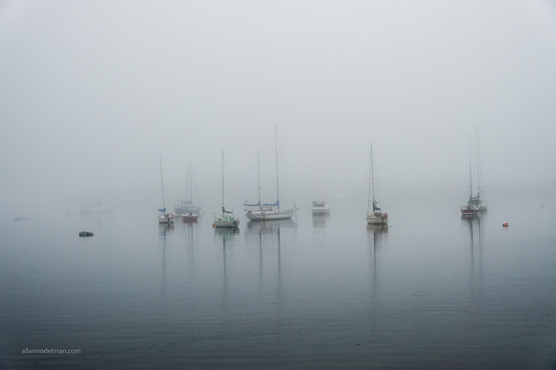 Foggy Oak Bay Marina in Victoria