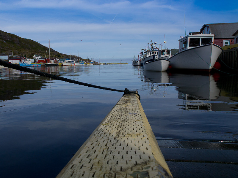 Petty Harbour. This is one of my favourite shots of the trip.