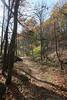 Virginia 2011 - Doyles Falls Trail 026