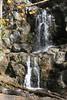 Virginia 2011 - Doyles Falls Trail 042